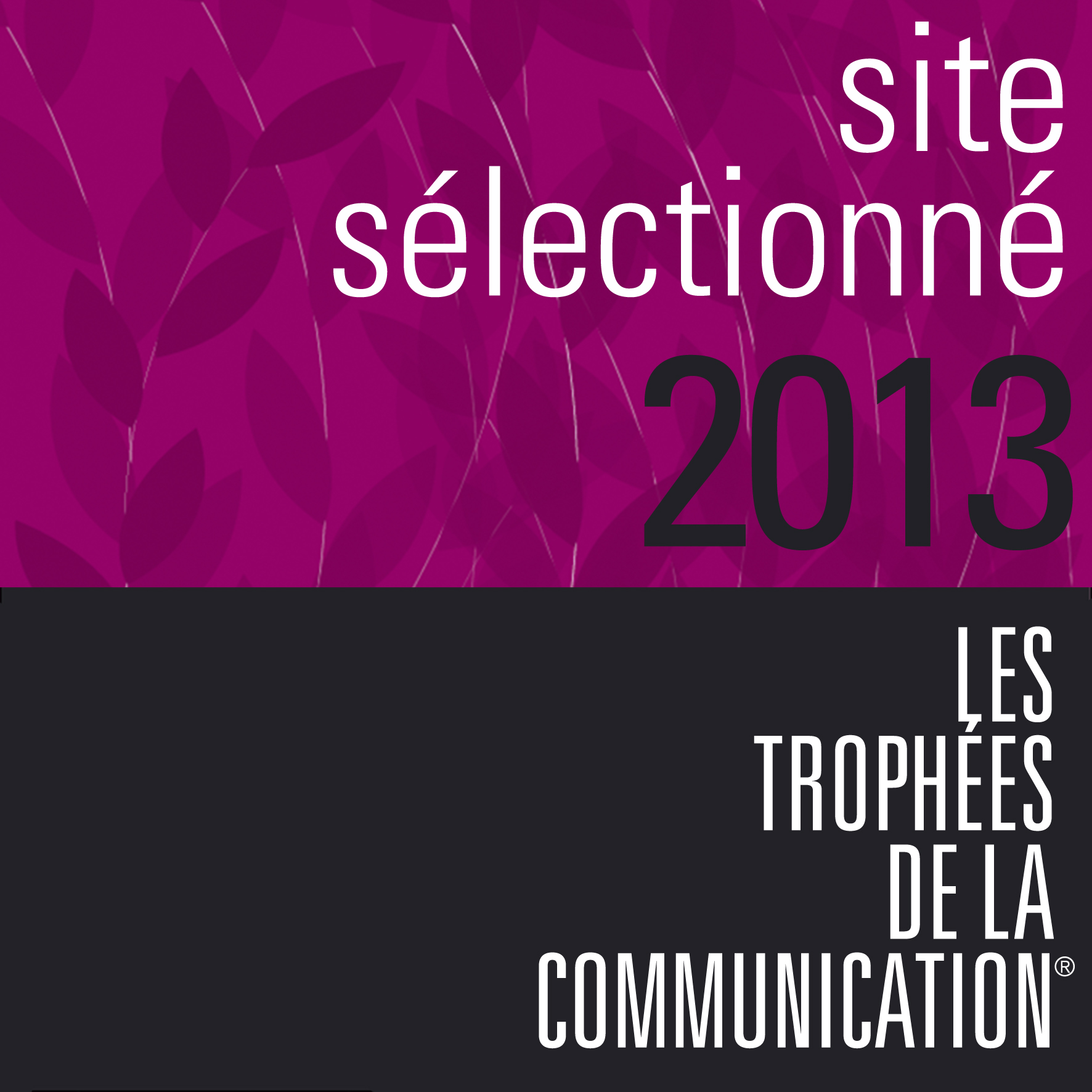 TROPHEES DE LA COMMUNICATION 2013